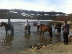 With the horse in St. Olaf track. Skalstugan – Karl Johans Klev